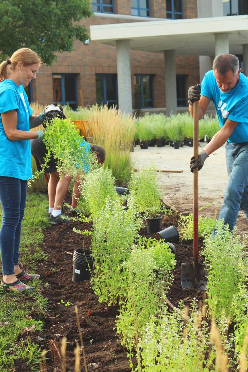 Bénévoles en train de faire des plantations dans un jardin