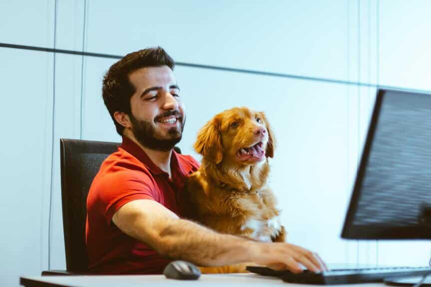 travailleur assis devant un ordinateur avec chien sur les genoux